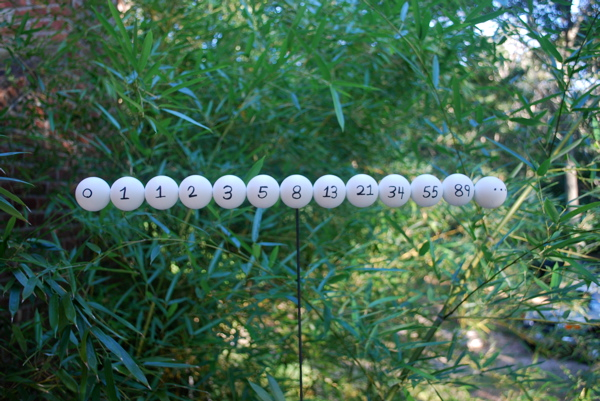 white balls showing fibonacci sequence