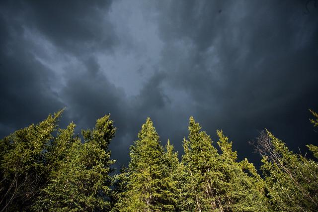 storm_ 5301805312_b3e0f46a15_z